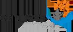 logo -dm- CongressMinsk (final)